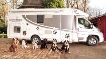 Dog-Liner - Кемпер за собственици на кучета