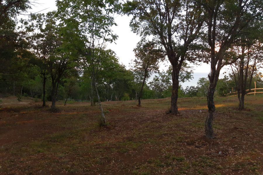 Camping Irakli Wild